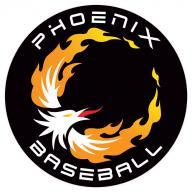Phoenix Baseball logo