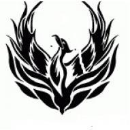 Northwest Area Lacrosse  logo