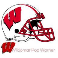 Wild Tigers logo
