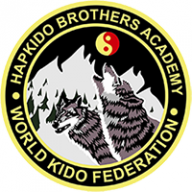 Hapkido Brothers Academy logo