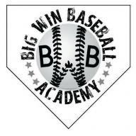 Baron Baseball Club logo
