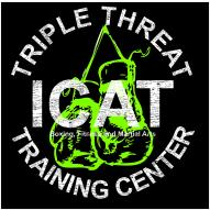 ICAT Warriors logo